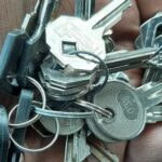 личинки и ключи для автоматических ворот